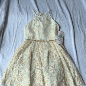 Rare Editions Dresses - NWT girls Rare Edition dressy lace dress, size 12